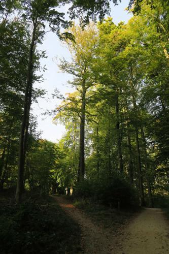 naar bos 14
